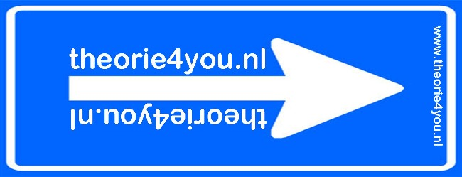 Theorie4you.nl
